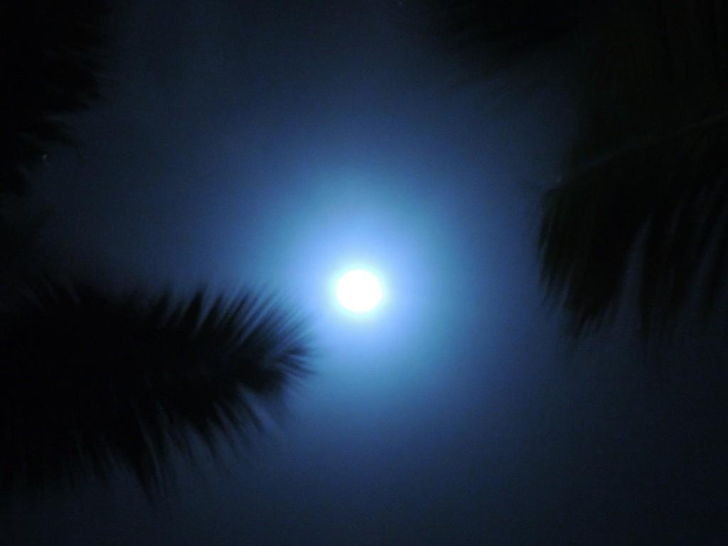 タヒチの幻想的な月あかり