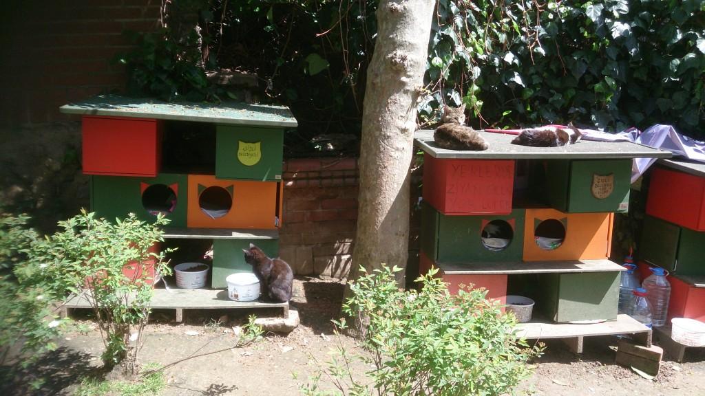 トルコ イスタンブルの公園にある猫アパート